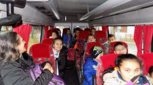 Alsósok Gyula-Városerdőn